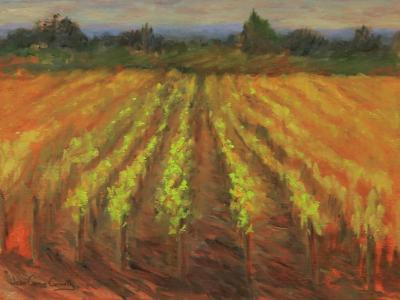 Sonoma Vineyards I