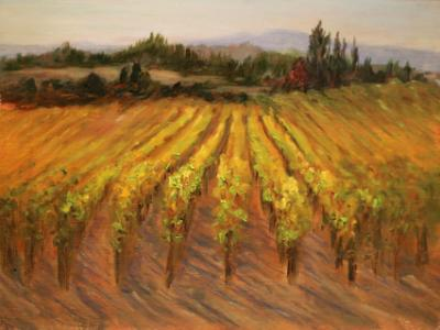 Sonoma Vineyard II